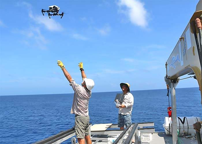 Drones are flown over the the island for aerial research.
