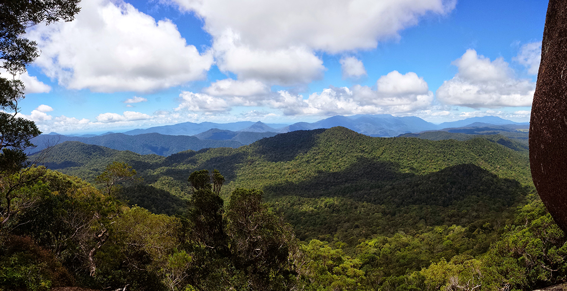Views over rugged forest-clad peaks and valleys in deep greens and blues, with cloudy blue skies above.