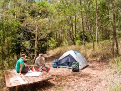 Wongai walkers' camp, Conondale Range Great Walk. Photo: Robert Ashdown, Queensland Government.