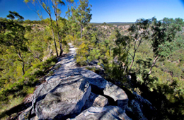Take care and keep away from the edges on this short walk to a natural lookout. Photo: Robert Ashdown © Queensland Government