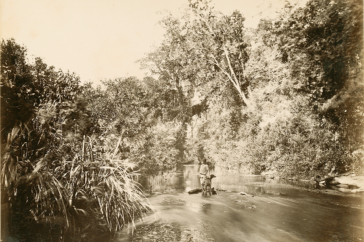 An old sepia photo of person with dog standing in shallow creek surrounded by forest.