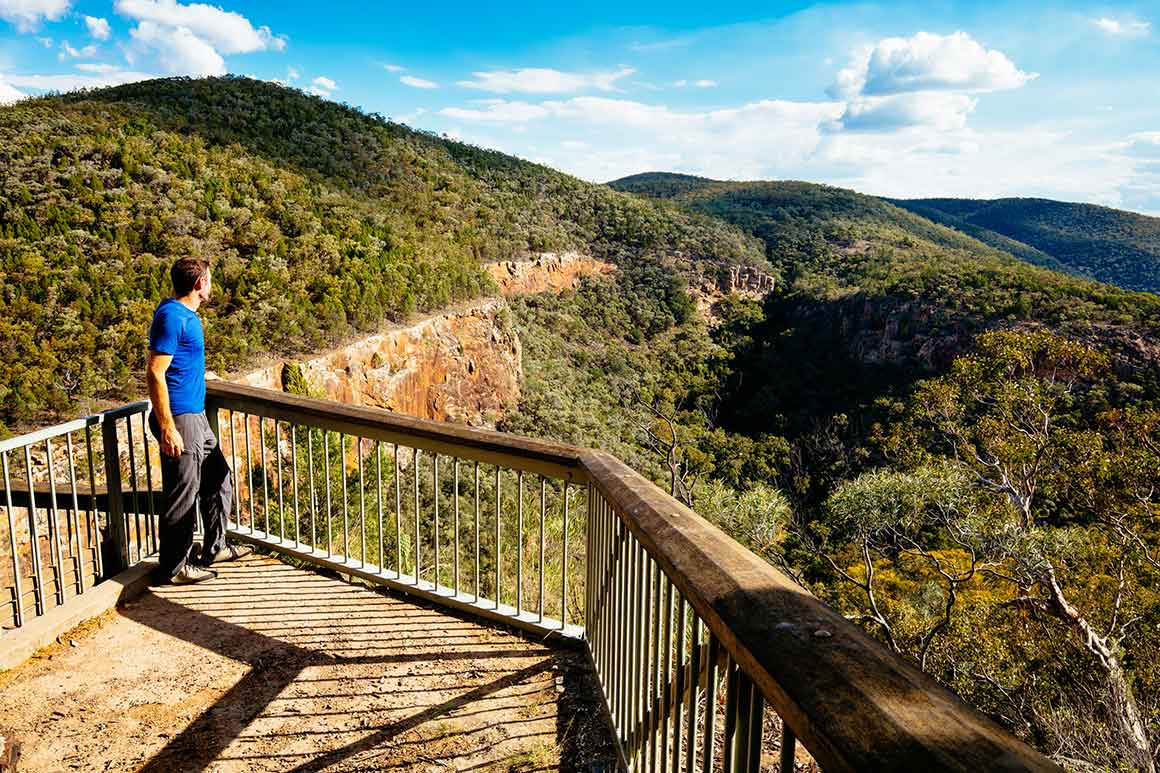 A man in bright blue t-shirt leans on handrail of lookout and gazes at views over forested ridge and deep gorge, under blue cloudy sky.
