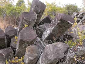 Columnar basalt, Mount Scoria Conservation Park. Photo: Queensland Government