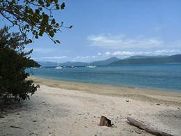 Image of the beach at Fitzroy Island where there are several A-class public moorings.
