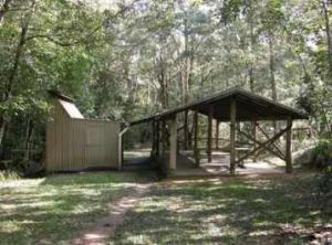 A large shelter shed with gas barbecues is provided at the camping area. Photo: Queensland Government.