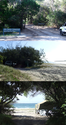 M.V. Natone camping area is set behind the foredunes and has beach access for four-wheel-drive vehicles. Photo: Queensland Government