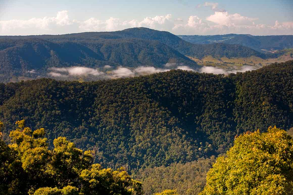 Aerial views over rugged forested mountain ranges in foreground and background, with low cloud sitting in the valley in between