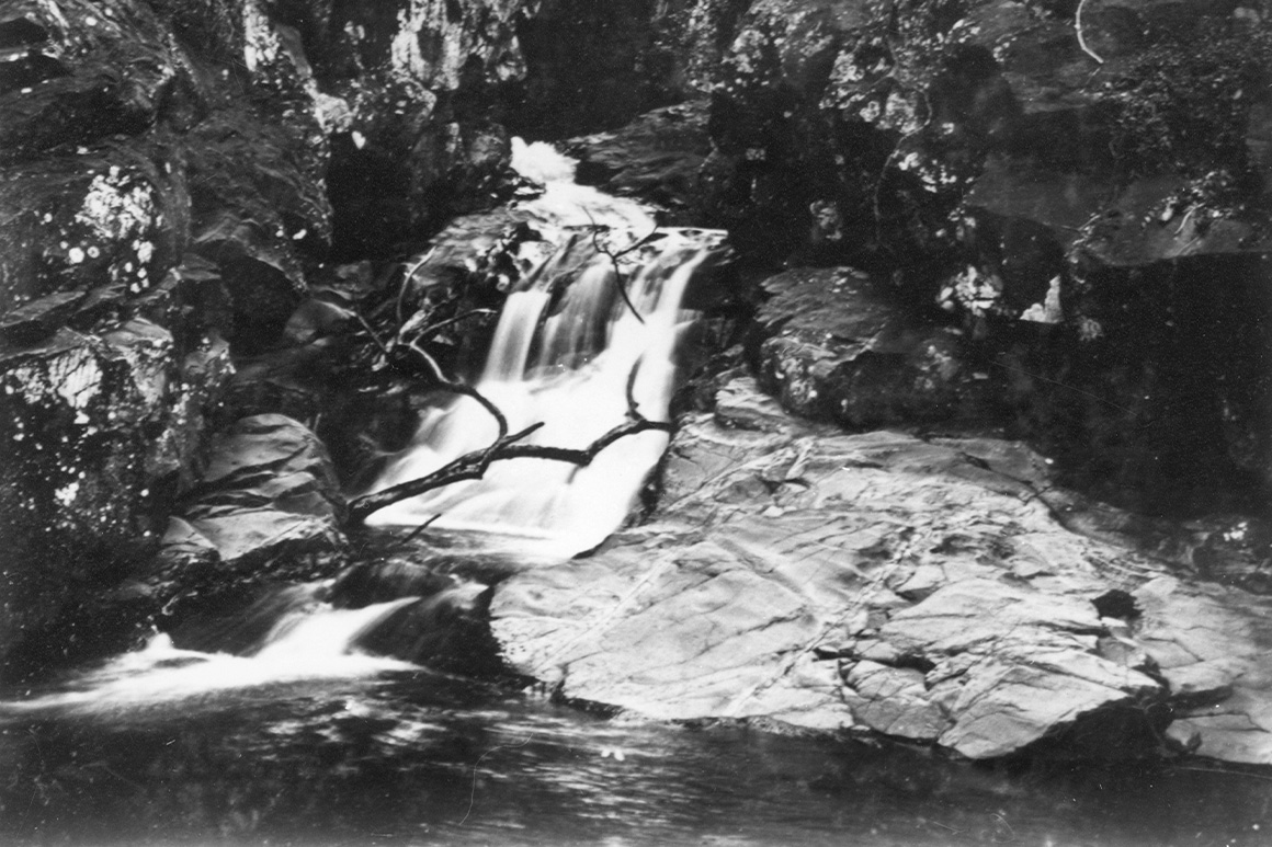 Old black and white image of waterfall flowing into rock pool surrounded by rainforest.