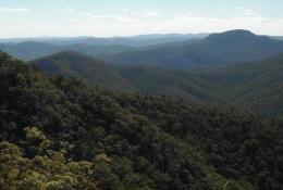 Landscape view from The Loop road, a high clearance 4WD circuit. Photo: Queensland Government.