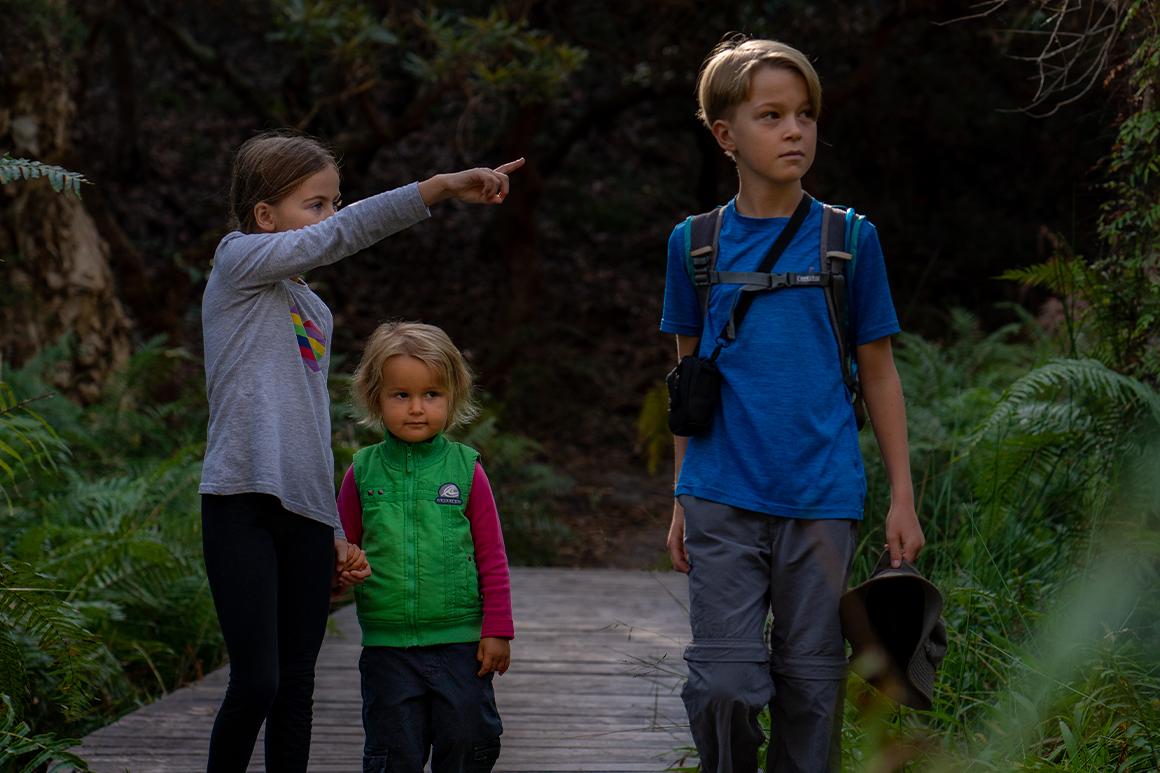 Children walking on boardwalk surrounded by forest.