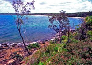 Horseshoe Bay and Platypus Bay are open to the public. The rest of the island is a restricted access area to help preserve its historic remains. Photo: Robert Ashdown
