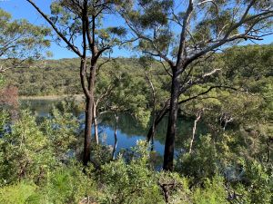 Image of Kaboora (deep silent pool) is an area of special cultural significance to the Quandamooka people. Please respect their culture by not swimming in the lake. Photo: Queensland Government.
