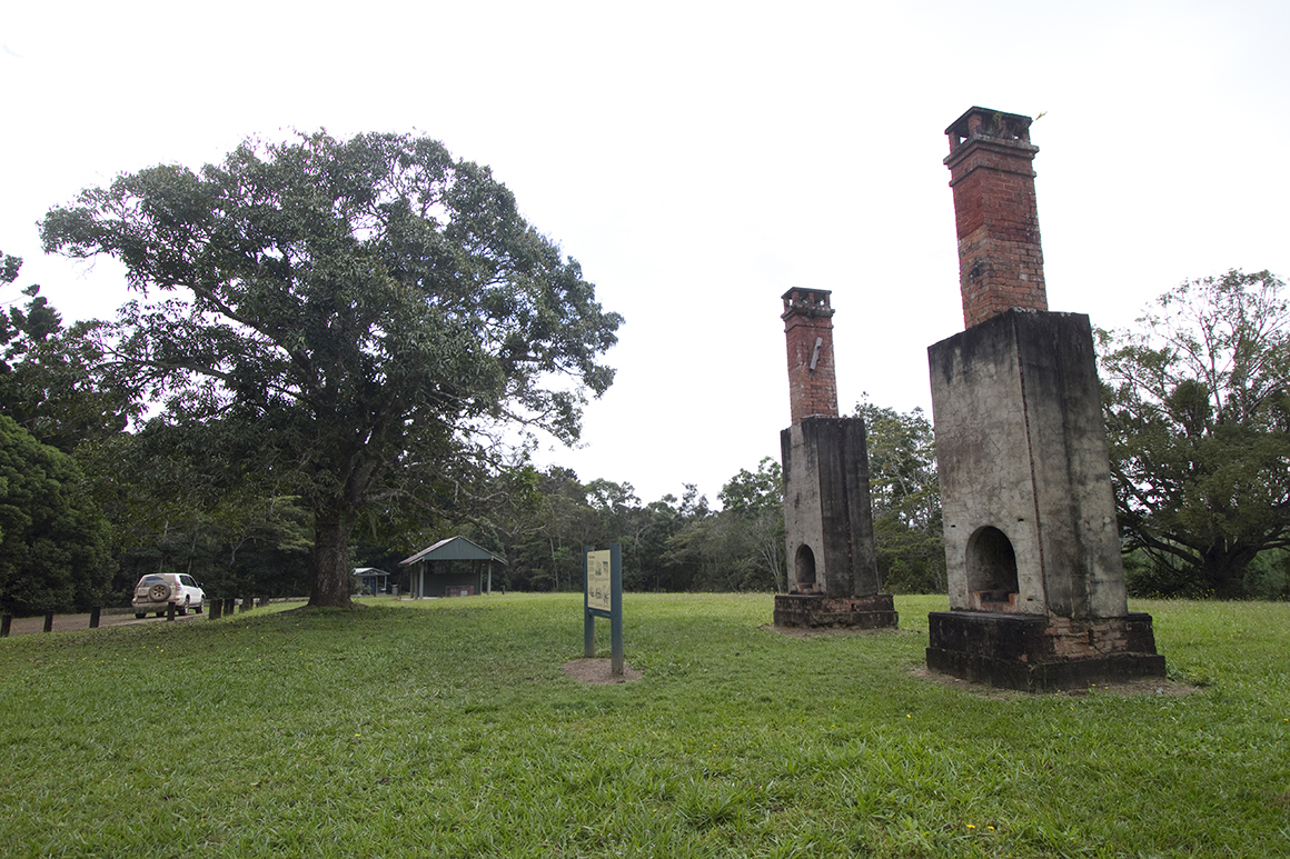 TTwo tall chimneys complete with original fireplaces stand alone in a green grassy clearing with a picnic shelter in the background.