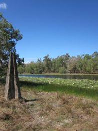 Twin Lagoons. Photo: Queensland Government.