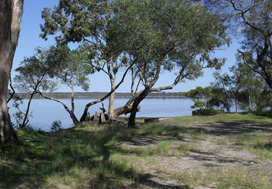 Poverty Point camping area overlooks the tranquil, tidal waters of the Tin Can Inlet. Photo: René Burgess, Queensland Government