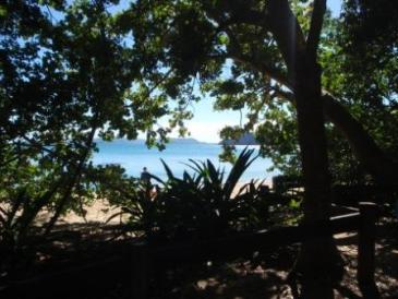 Naris Beach camping area. Photo: Queensland Government.
