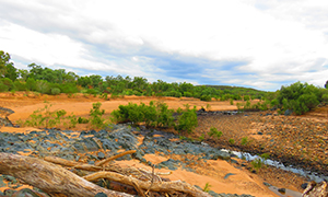 The contrasting colours of Rungulla National Park.