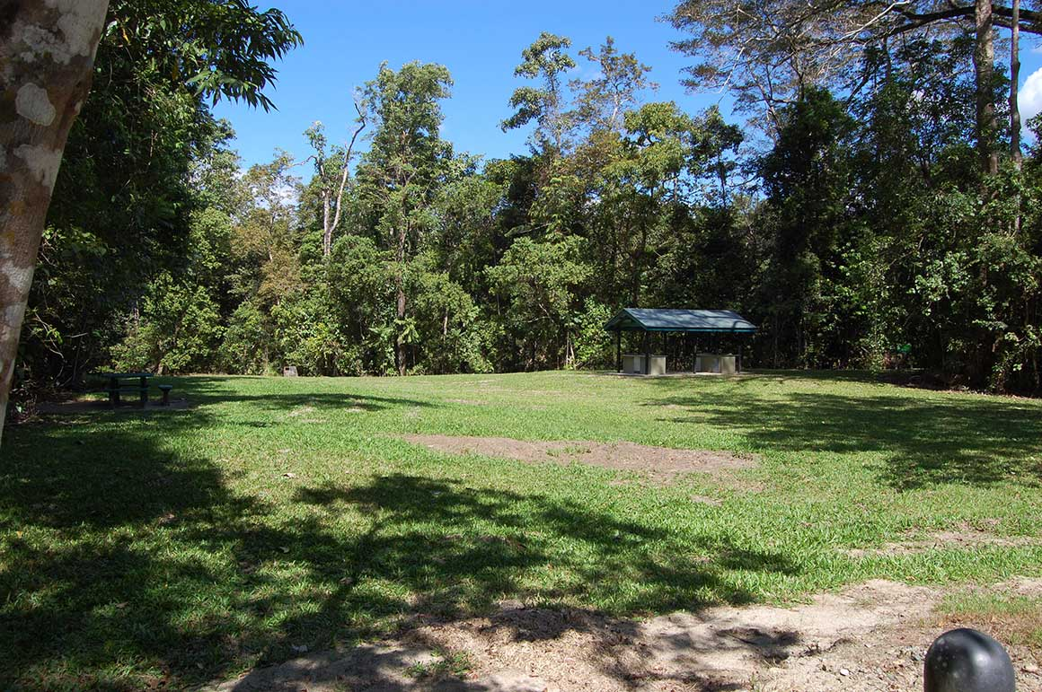 Grassy open space with picnic shelter against backdrop of green rainforest and blue sky