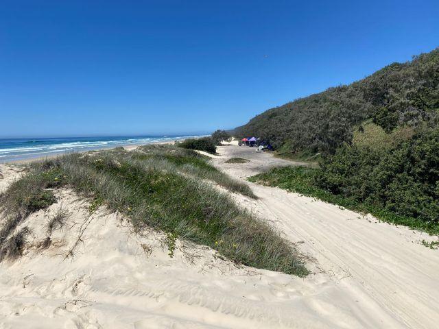 Image of Teewah Beach camping area zone 1