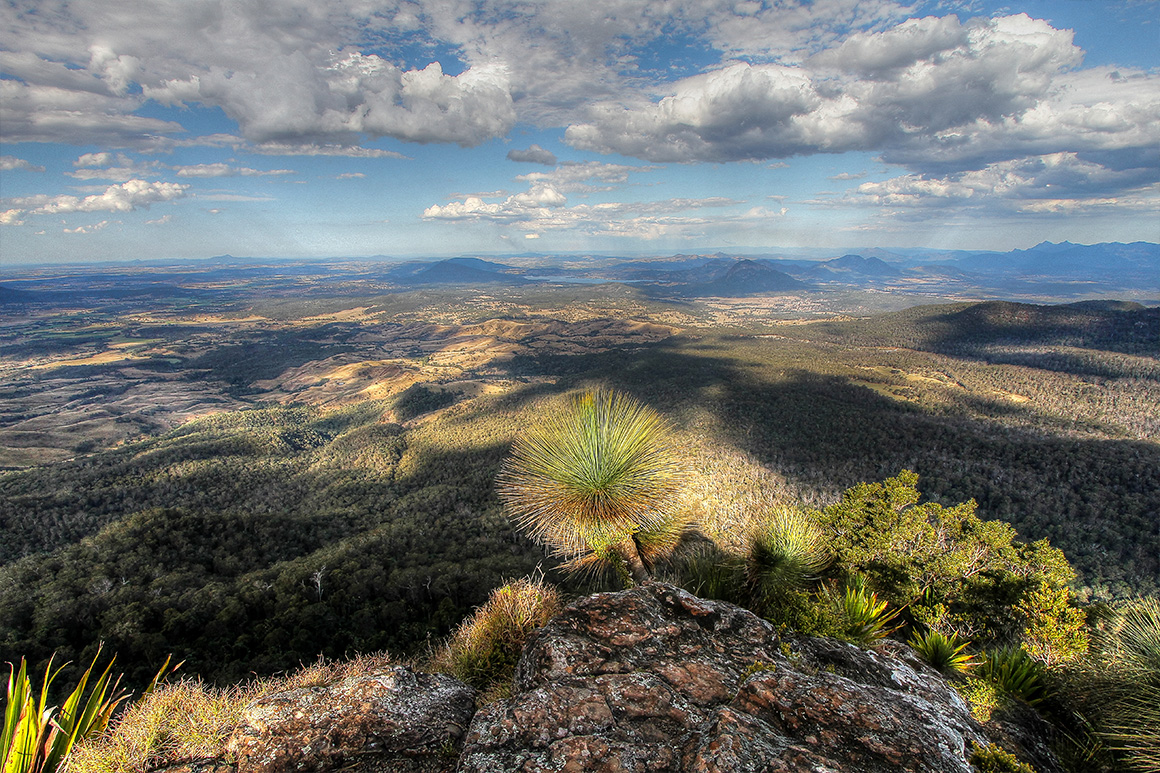 Extensive view over forest ridges and valleys from high vantage point.