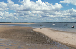 Intertidal sand flats at Burrum Heads