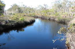Waterway of Tin Can Inlet declared Fish Habitat Area
