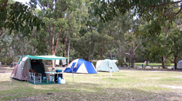 Pitch your tent in open grassy areas of Castle Rock camping area.