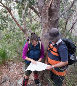 Carry a topographic map or a GPS and know how to use them to navigate remote routes in the park. Photo: Steve Browne, Queensland Government.
