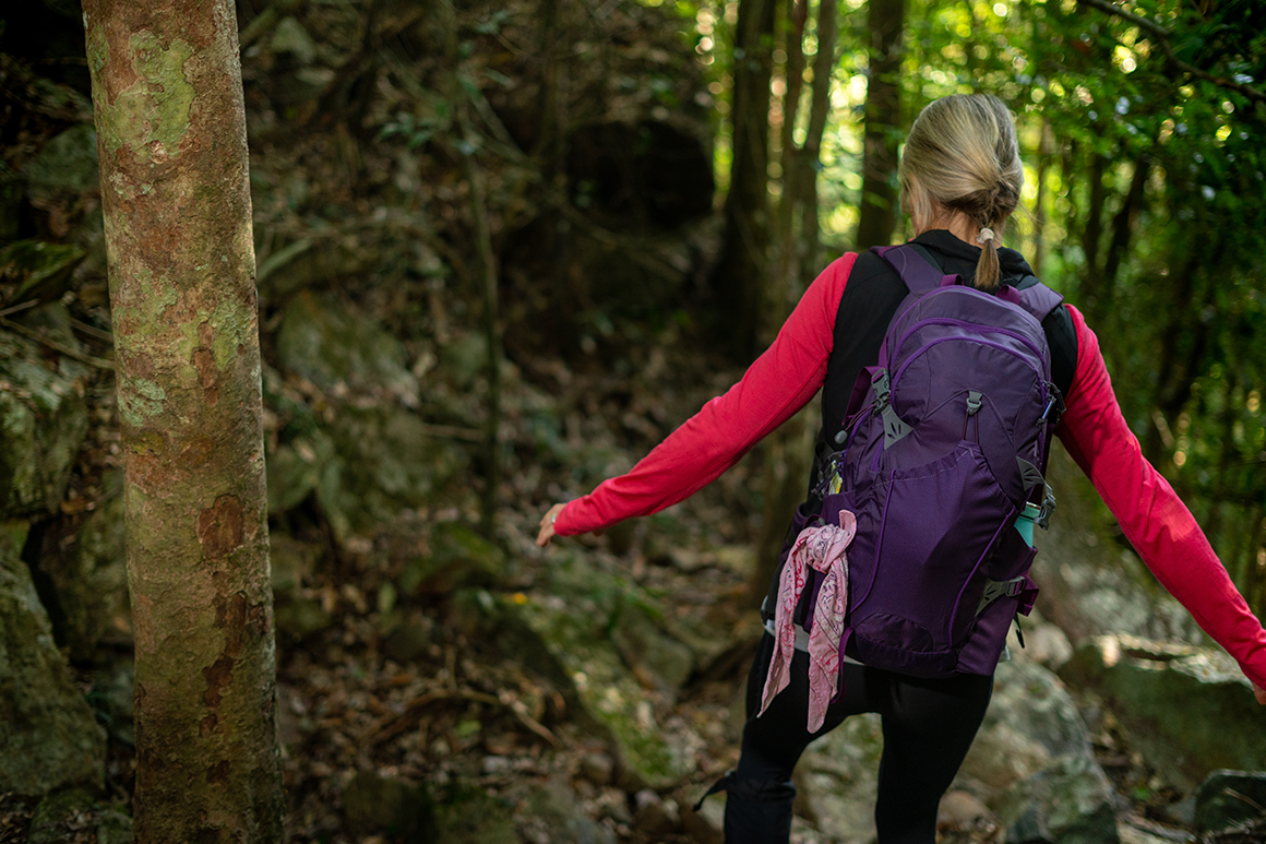 A female hiker in a pink shirt and wearing a purple backpack is walking on a rainforest track.