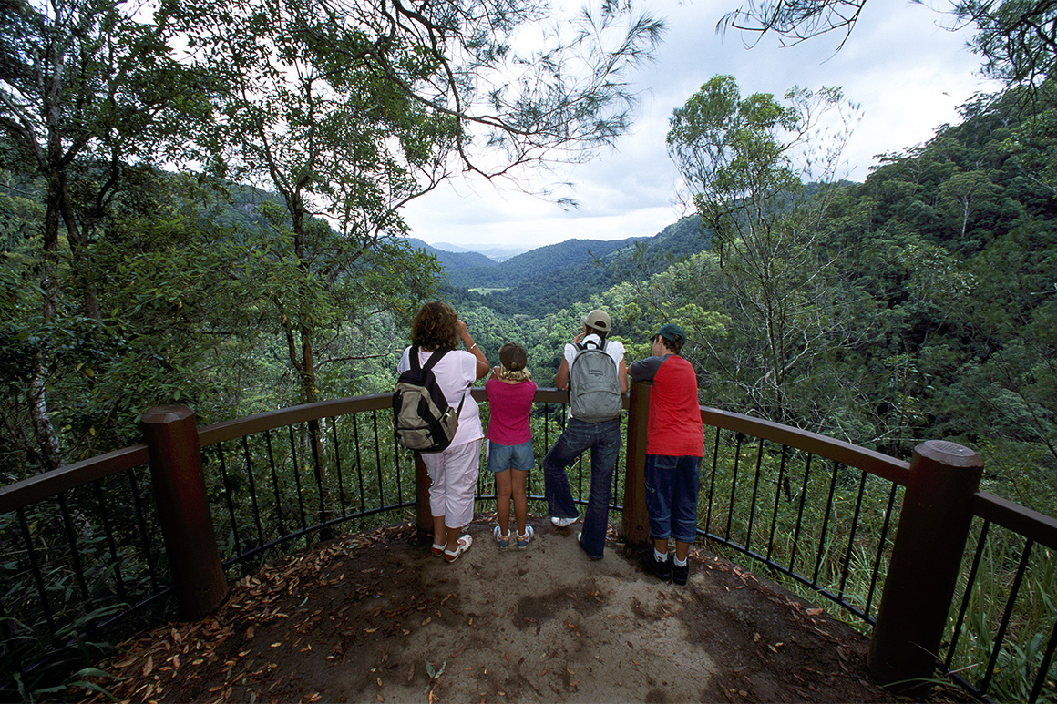 Visitors at a lookout over a rainforested valley with mountains in distance.