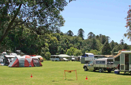 Dandabah camping area is centrally located and close to walking tracks and other facilities. Photo: M. O'Connor, Queensland Government