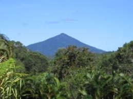 Black Mountain, Mowbray National Park. Photo: Queensland Government.