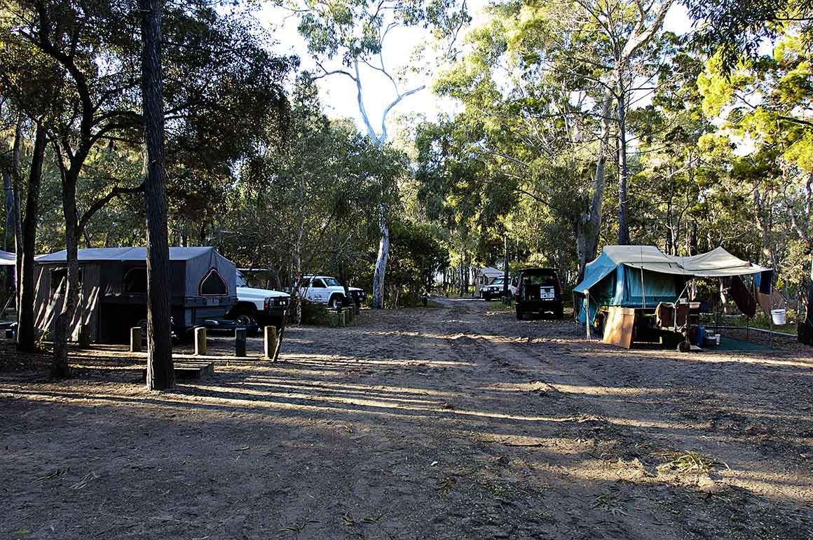 Sandy track leads through camping area with large tents set amongst tall shady trees on either side.