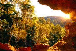 Late afternoon sun highlights dry rainforest and illuminates the sandstone walls of Dragon Cave. Photo: Robert Ashdown, Queensland Government.