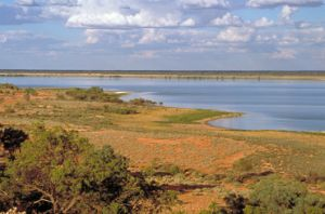 View across Lake Bindegolly, one of a string of salt and freshwater wetlands within Lake Bindegolly National Park.