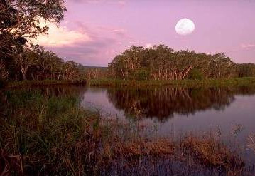Most areas in Cooloola are remote. Mobile phone reception is intermittent or non-existent in places. Help can be hours away. Factor in good communication and navigation equipment when planning to visit. Photo: Queensland Government
