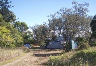 Northern Spit campground, Henning Island. Photo: Queensland Government.