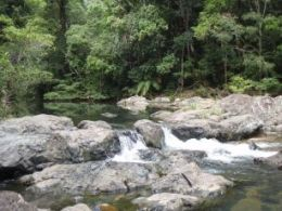 Relax at Repulse Creek. Photo: Ross Perry, Queensland Government.