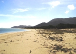 The beach along Wongai camping area