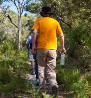 Use sun protection, carry water and stay on the walking tracks at all times. Photo: Queensland Government.