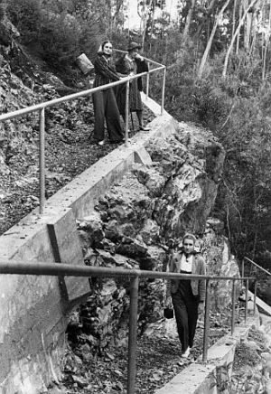 Track building was a high priority for the new park. Concrete ramp and handrails replaced the wooden ladders that took tourists down cliff faces to the base of falls in the Canyon area.