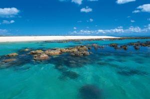 Image of Michaelmas Cay, Queensland.