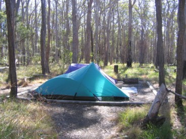 Frog Buttress camping area. Photo: Mark O'Brien, Queensland Government.