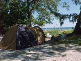 Camping on Lady Musgrave Island. Photo: Queensland Government