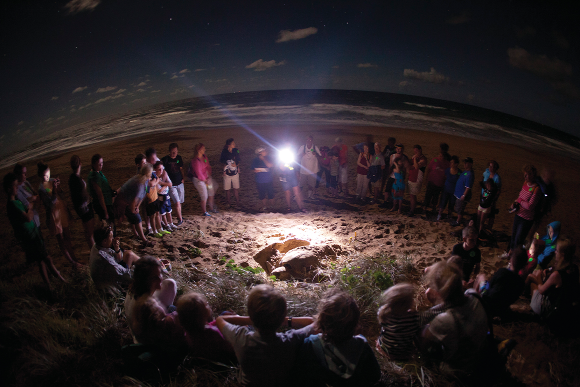 At night a group of people encircle a nesting turtle on the beach illuminated by torchlight held by ranger guide.