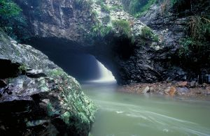 Natural bridge, carved by the power of water.