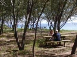 Camp under shady casuarinas at Humpy Island.