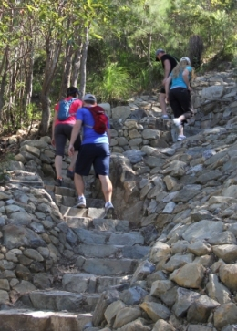 Many steps lead visitors to Mount Coolum's summit, 208m above sea level! The track is suitable for fit walkers only. Photo: Ross Naumann, QPWS volunteer.