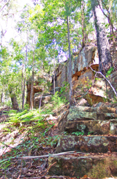 Sandstone outcrops on the Palm Creek circuit track. Photo: Brett Roberts © Queensland Government