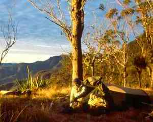 Image of well prepared, fit and experienced bushwalkers venture to the remoter locations within Main Range National Park.